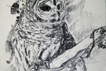 sketchbook_owl